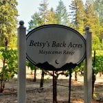 Moon Mountain District Winery and Vineyard Sonoma County – Glen Ellen, CA