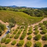 Healdsburg Vineyard & Estate For Sale