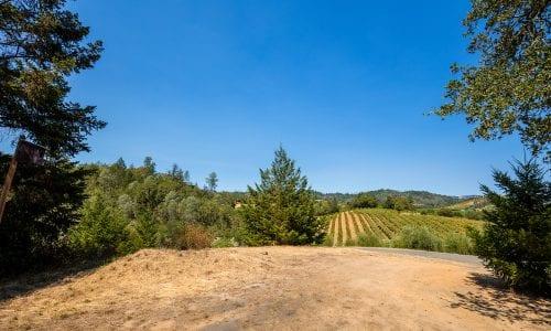 Healdsburg Vineyard & EState For Sale