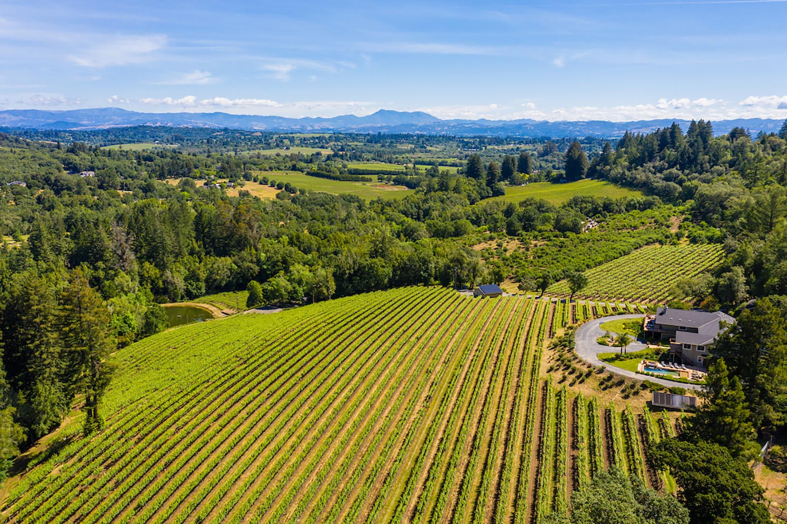 Premier West Sonoma County Vineyard Estate and Guest House