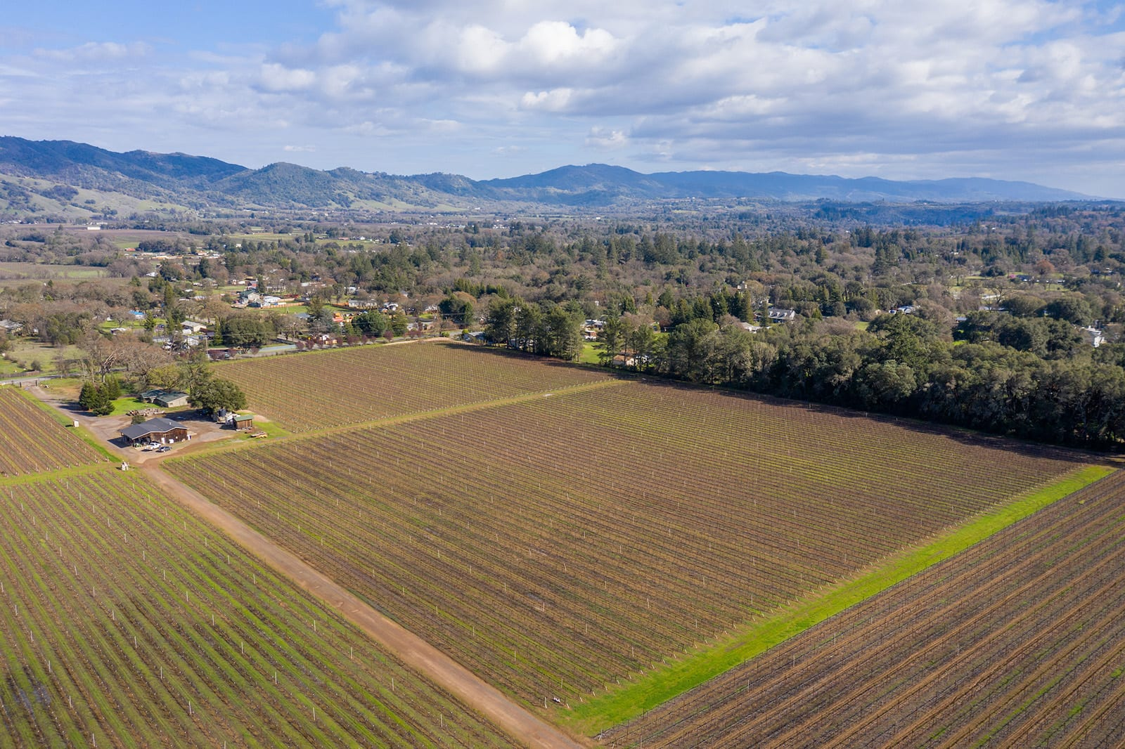 17 Acre Vineyard Redwood Valley