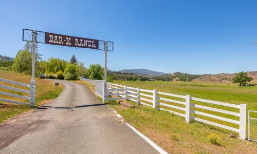 NorCalVIneyards Bar X Ranch Gate