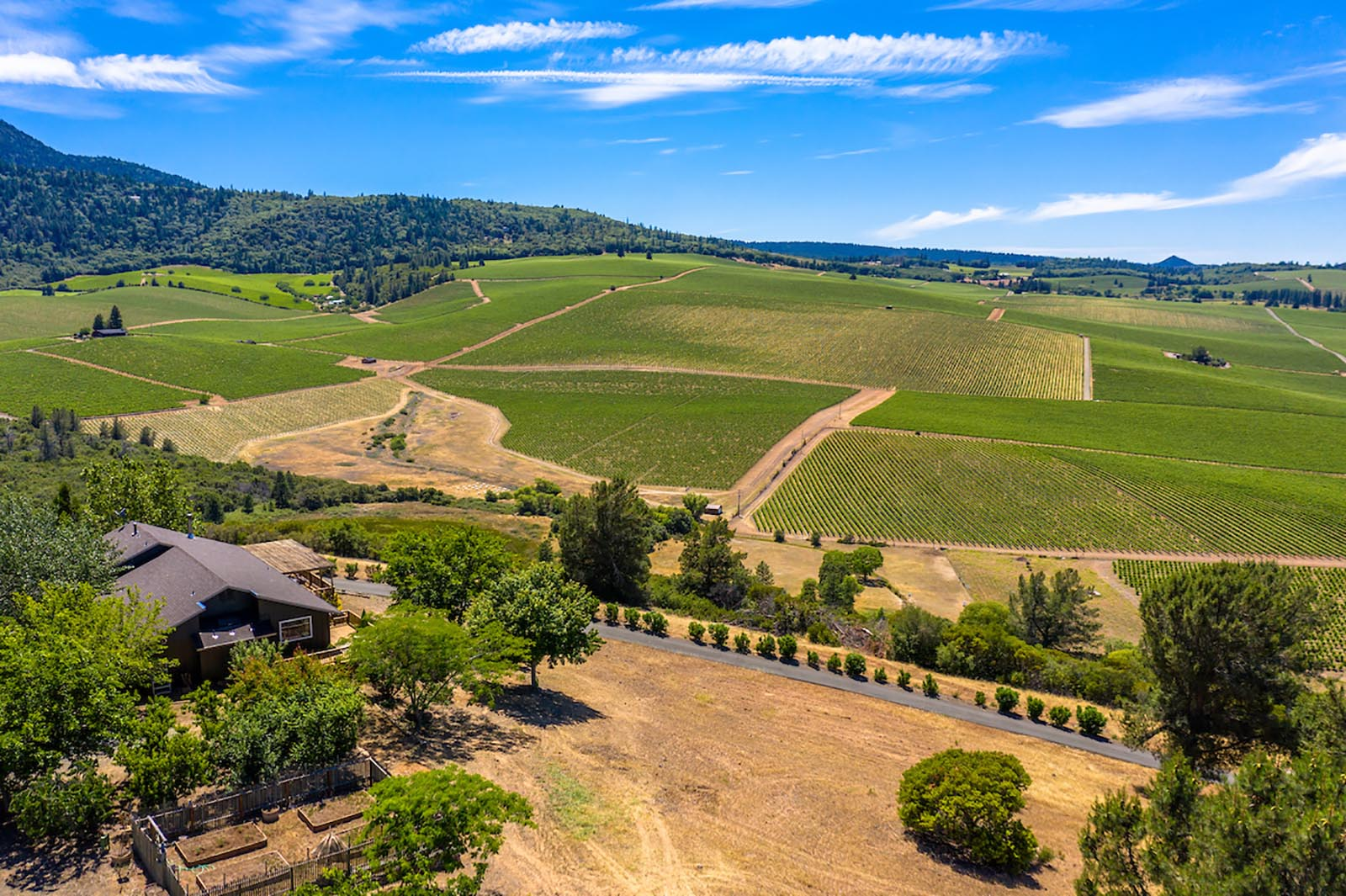 Eagles Nest Vineyard Estate in Red Hills AVA