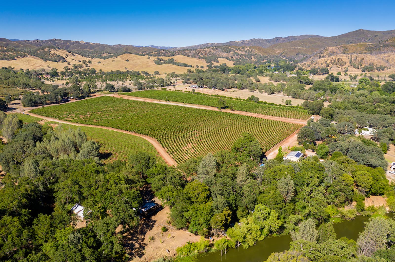 Eagles Nest Vineyard Estate in Red Hills AVA