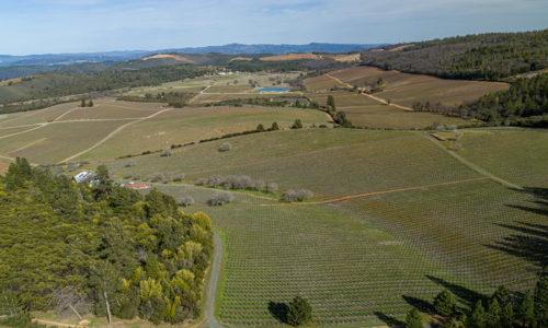 Cougars Leap Winery & Vineyard